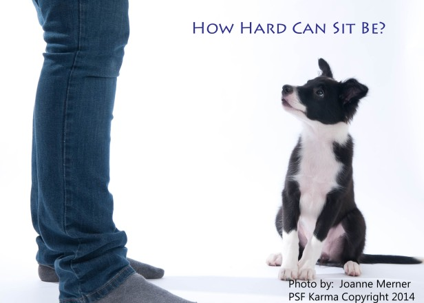 How hard can sit be